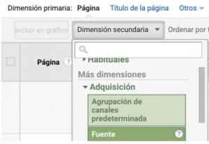 Analytic/Dimensión secundaria
